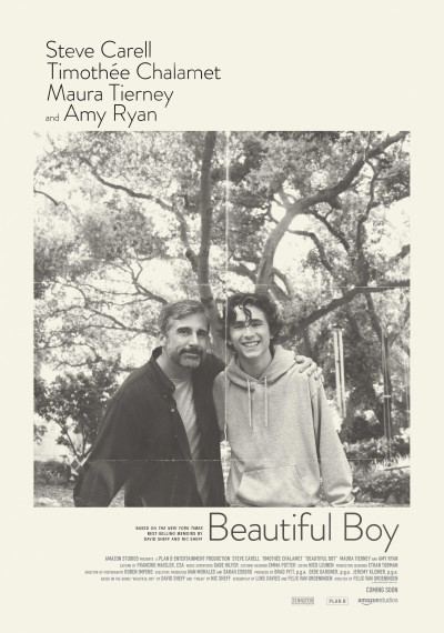 Beautiful Boy: Poster