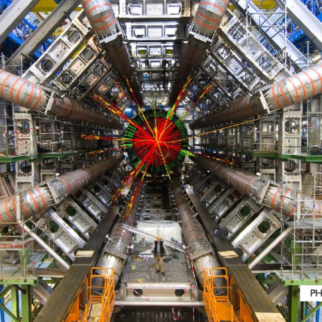 CERN and the Sense of Beauty