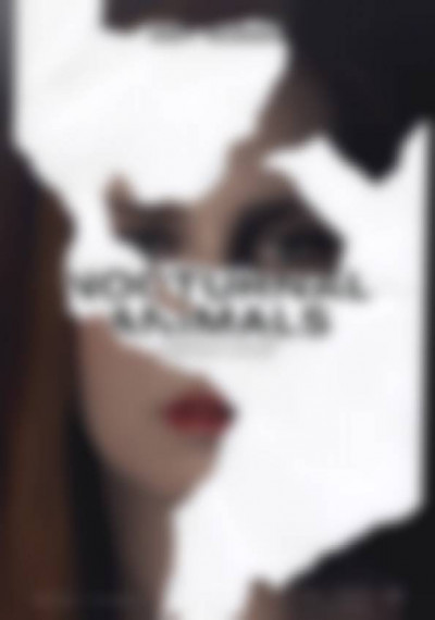Nocturnal Animals: Poster