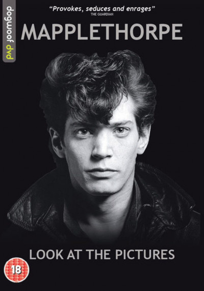 Mapplethorpe: Look at the Pictures: Poster